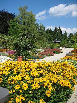 Augsburg Bot Garten Bluehender Senkgarten