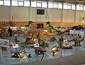 Ausstellung Elbe-Elster-Halle 1.jpg