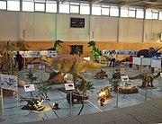 Ausstellung in der Elbe-Elster-Halle