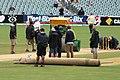 Australia v England (2nd Test, Adelaide Oval, 2013-14) (11287702024).jpg