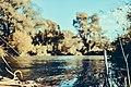 Autumn 2 (126207081).jpeg