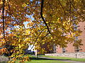 Autumn at the Chapel of the Resurrection 13.JPG