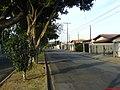 Av Jose Fonseca de Arruda - JD das Oliveiras - panoramio - Paulo Humberto (2).jpg