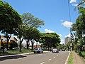 Avenida Santos Dumont, Franca (SP), Brasil 13012019.jpg