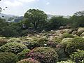 Azalea Valley in Mifuneyama Garden 3.jpg