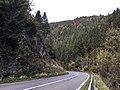 B93 Gurktal Bundesstraße im Bereich des Severgrabens, Kärnten.jpg