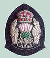 BADGE - Scotland - Scottish National Senior police officer 6 (7980567319).jpg