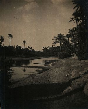Béchar - Shore of Oued Béchar in January 1913.