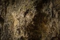 Baerenschliff Vogelherdhoehle.jpg
