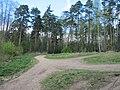 Balashikha, Moscow Oblast, Russia - panoramio (280).jpg