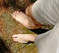 Barefoot hiking in forest.jpg