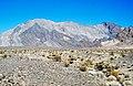 Bat Mountain (Funeral Mountains, Inyo County, California, USA) 1.jpg
