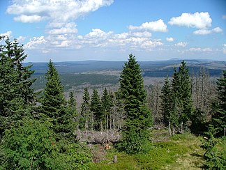 Mittelgebirgslandschaft des Bayerischen Waldes mit teilweise abgestorbenem Wald