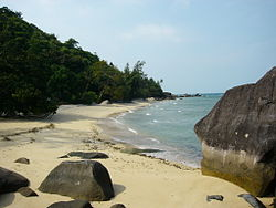 Beach of Pulau Tioman.JPG
