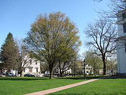 Bedford Common, MA.jpg