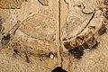 Begijnhofkerk, twee overlappende wijdingskruisen in de as van het koor - 373954 - onroerenderfgoed.jpg