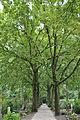 Begraafplaats Sint Barbara Utrecht C07082012 12.JPG