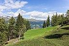 Bergtocht van Tschiertschen (1350 meter) via de vlinderroute naar Furgglis 08.jpg