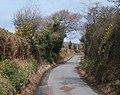 Between the hedgerows - the Llangybi road - geograph.org.uk - 1779081.jpg