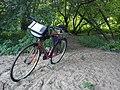 Bike Poznan Warta.jpg