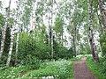 Birch Park - panoramio.jpg