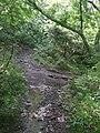 Bivio per Le Strosce - panoramio.jpg