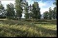 Björkö-Birka - KMB - 16000300020445.jpg