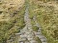 Blackstone Edge Roman Road - geograph.org.uk - 59481.jpg
