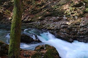 Vintgar Gorge - Rapids in the upper Vintgar Gorge