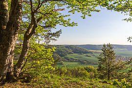 Blick auf das Naturschutzgebiet 'Alter Gleisberg' aus Richtung des NSG 'Gleistalhänge' bei Jena.jpg