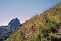 Blick zum Pic du Midi d'Ossau (LM25110).jpg
