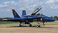 Blue Angels McDonnell Douglas FA-18 Hornet 2.jpg