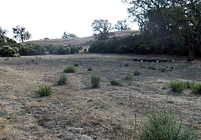 Blue Oak Ranch (19071834426).jpg
