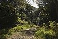 Bowral NSW 2576, Australia - panoramio (118).jpg