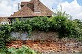 Brick wall and ivy in the Walled Garden of Goodnestone Park Kent England.jpg