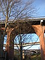 Bridges from the Ouseburn Valley - geograph.org.uk - 1064931.jpg