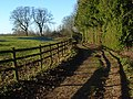 Bridleway, Ewelme Park - geograph.org.uk - 1082209.jpg