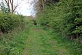 Bridleway by canal, Stockton (2) - geograph.org.uk - 1276894.jpg