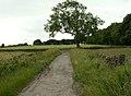 Bridleway meets Highway - geograph.org.uk - 479774.jpg