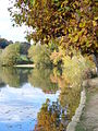 Britten's Pond - geograph.org.uk - 602161.jpg