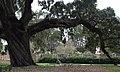 Brookgreen Gardens 8 (3326508449).jpg
