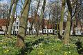 Brugge Begijnhof R07.jpg
