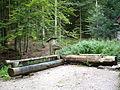 Buchhornbrunnen 090908.JPG