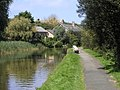 Bude Canal - geograph.org.uk - 1336151.jpg