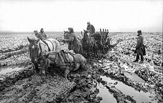 Rasputitsa - Image: Bundesarchiv Bild 101I 289 1091 26, Russland, Pferdegespann im Schlamm
