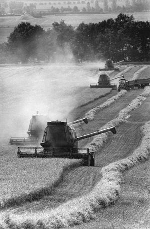 Landwirtschaftliche Produktionsgenossenschaft - Wheat harvest in an LPG in 1986