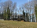 Burgstall von Theinselberg - panoramio.jpg
