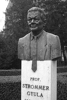 Bust of Prof Gyula Strommer (1920-1995) at Budapest Technical University.jpg