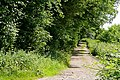 Byway to Coombe End Farm - geograph.org.uk - 1386408.jpg
