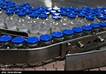 COVIran Barekat vaccine production 01.jpg